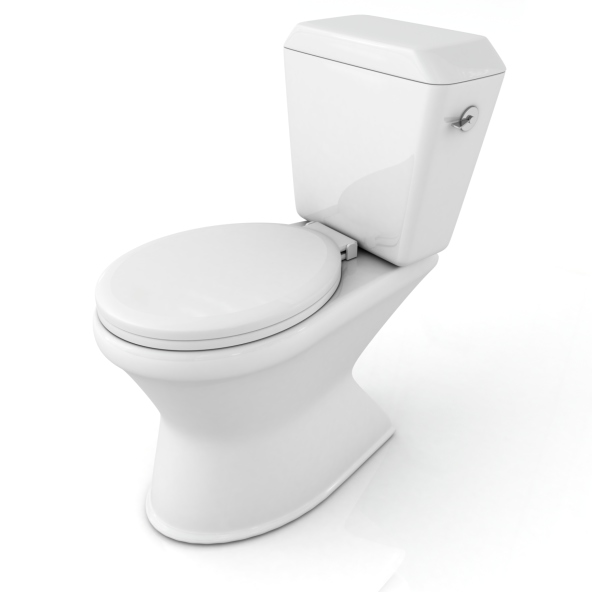 Commercial Toilet Installation in Lithia, Florida