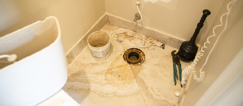 Commercial Toilet Repair in FishHawk, Florida